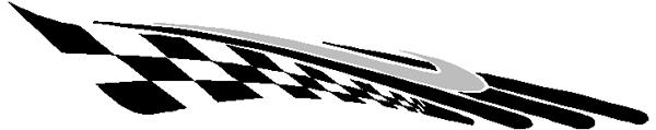 Cougar two tone stripe vinyl decal 3066