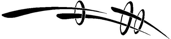 Pierced circle stripes vinyl decal. 3132