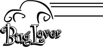 'Bug Lover' boat lettering vinyl sticker customized on line. GA01V007