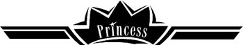'Princess' boat lettering graphic vinyl sticker customized on line. GA01V169