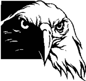 American Eagle decal by SignSpecialist.com