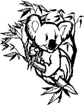 Koala bear decal. Personalize on line. 198 koala bear decal sticker customized online