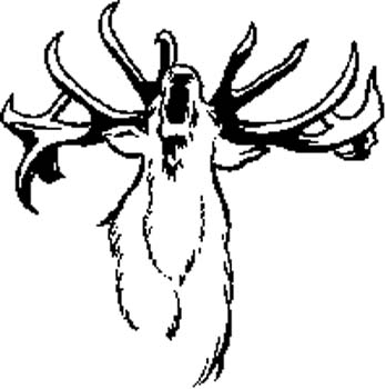 231    Elk vinyl decal customized online.