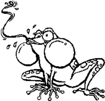 296   Toon Frog vinyl decal customized online.