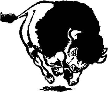 316   Running buffalo vinyl decal customized online.