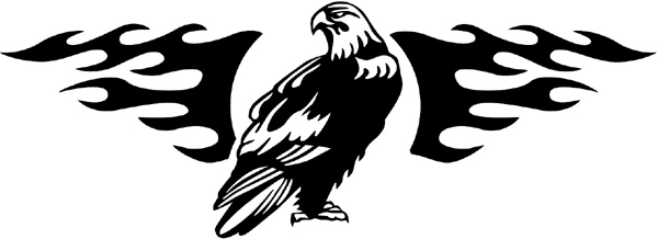 Eagle in flames mascot vinyl graphic decal personalized on line. animal-flames-0094b