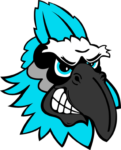 Blue Jay team mascot color vinyl sports decal. Customize on line. Blue Jay  Head 3