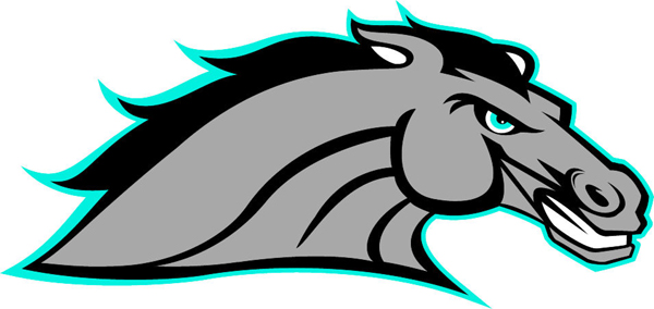 Bronco team mascot color vinyl sports decal. Personalize on line. Bronco 1