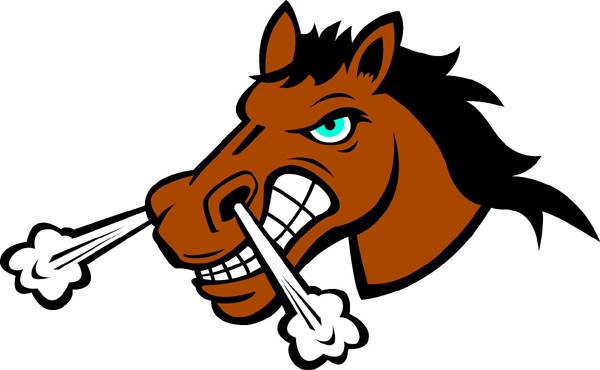 Bronco head team mascot full color vinyl sports sticker. Customize on line. Bronco Head 2