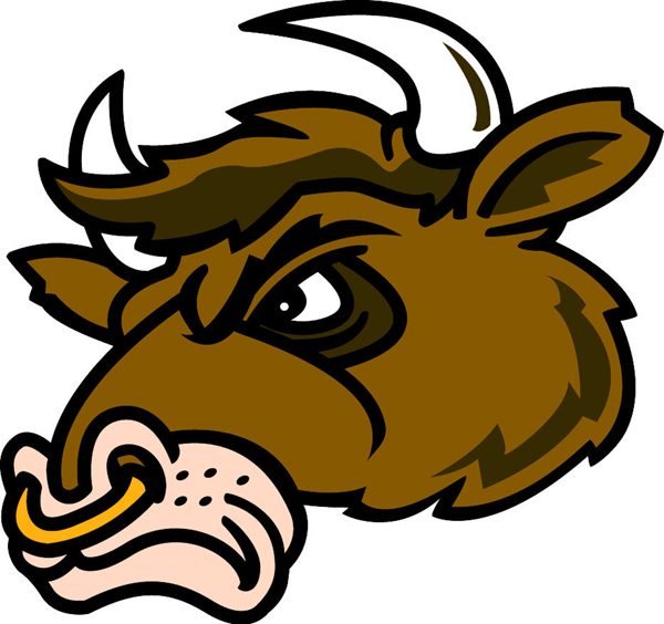 Bull team mascot color vinyl sports sticker. Customize on line. Bull 1 Head