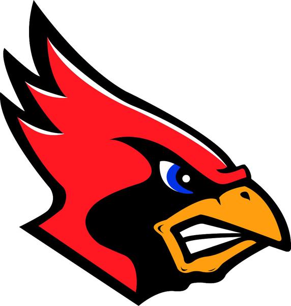 Football Shirt Ideas On Pinterest Arizona Cardinals