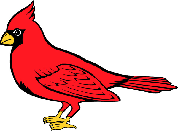 Cardinal team mascot color vinyl sports sticker. Personalize on line. Cardinal 1