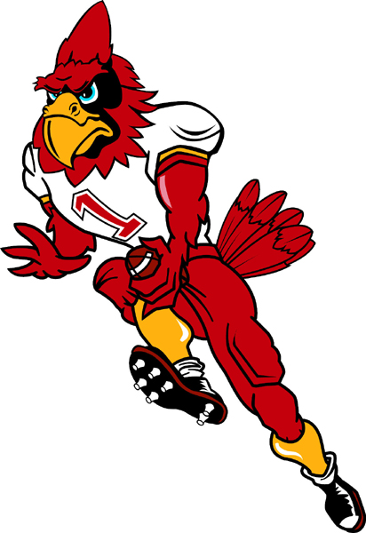 Cardinal football player team mascot color vinyl sports decal. Personalize as you order. Cardinal Football