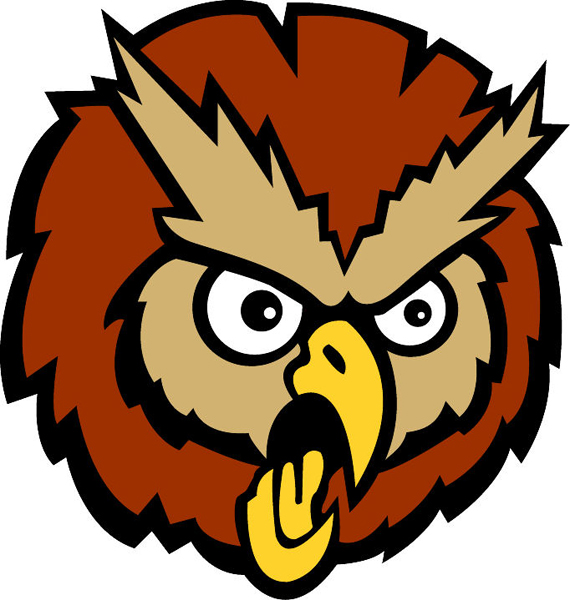 Owl mascot Head 1 sports decal. Reflect school pride!