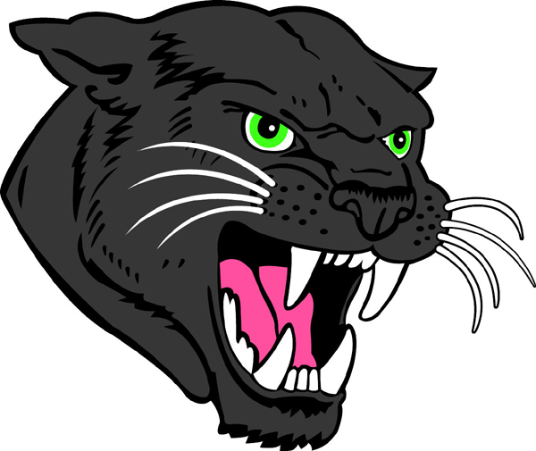 Panther Head 1 mascot sports decal. Make it personal!