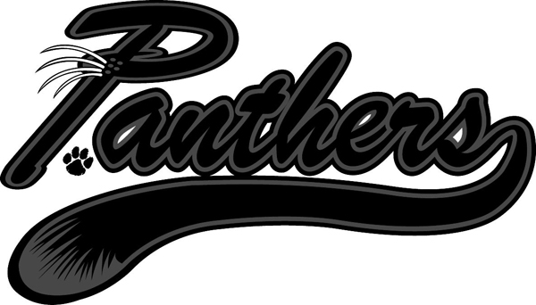 'Panthers' lettering vinyl sports decal. Let it speak for you! Panthers font