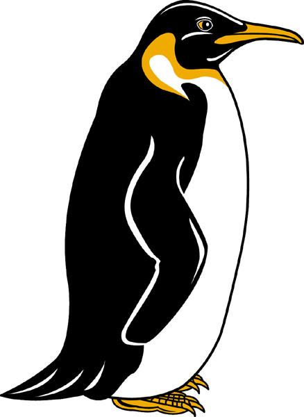 Penguin team mascot color vinyl sports sticker. Customize to make it your own. Penguin 1