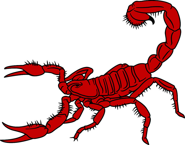 Scorpion mascot team decal. Own it today!