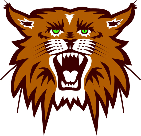 Wildcat team mascot color vinyl sports sticker. Customize on line. Wildcat 1
