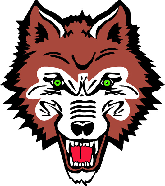 Wolf head team mascot full color vinyl sports decal.  Customize on line.  Wolf 2 Head