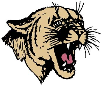 Wildcat mascot sports decal in color. Personalize on line. 2a10 - bobcat, wildcat mascot
