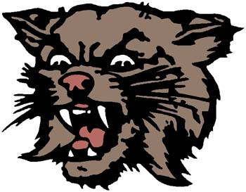 Wildcat mascot color sports decal. Personalize on line. 2a16 - wildcat bobcat decal