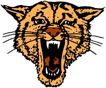 Wildcat mascot color sports decal. Personalize on line. 2a4 - wildcat