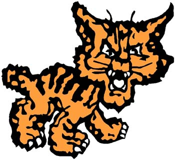 Wildcat 'toon mascot color sports sticker. Customize on line. 2a6- wildcat decal