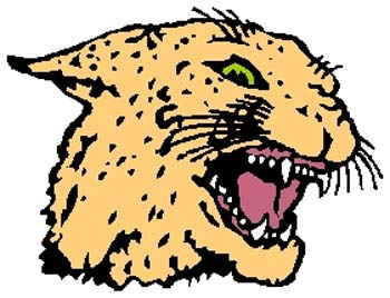 Cougar mascot color sports decal. Customize on line. 2b10 bobcat cougar