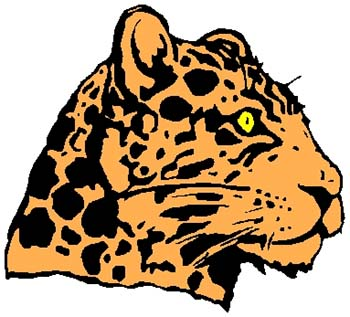 Cheetah mascot full color sports sticker. Personalize on line. 2b13- cheetah