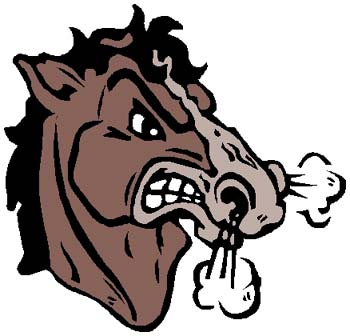 Wild Mustang color sports decal. Personalize on line. 2e8 horse head blowing smoke decal