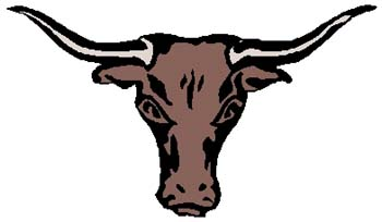 Bull's head mascot color action sports decal. Personalize on line as you order. 2e9 bull head