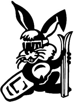 Ski Bunny vinyl sticker. Personalize on line as you order.  00000959.