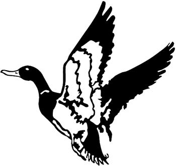 Mallard Duck vinyl decal. Customized Online. 0154