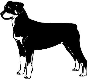 Rottweiler Dog decal Customized Online; 0164