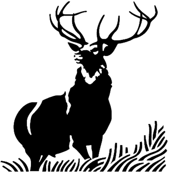 Design Your Own Decal Popular Decals Big 12 Point Buck