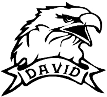 Bald Eagle Head with Name Banner Mascot Vinyl Decal Customized Online. 0940