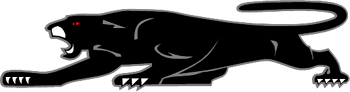 Panther Decal Customized Online. 1089