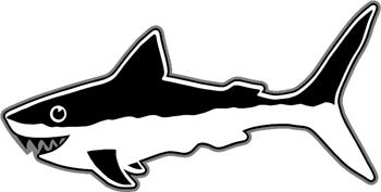 Shark Decal Customized Online. 1141