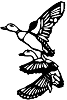 Mallard ducks vinyl decal Customized Online. 3353