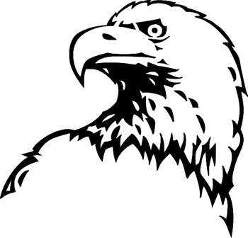 Bald eagle head graphic decal. Customized Online. 3354