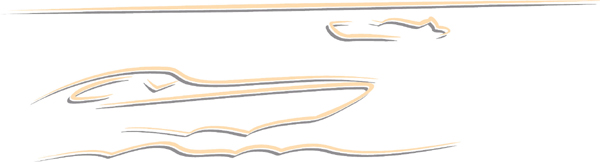 Sppedboat color action sports decal. Customize on line. AUTO_BOAT_2C_46
