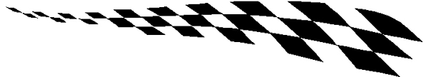 Checkered Past stripe vinyl decal. 227