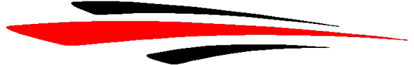 Cosmic two color stripe vinyl decal 3133